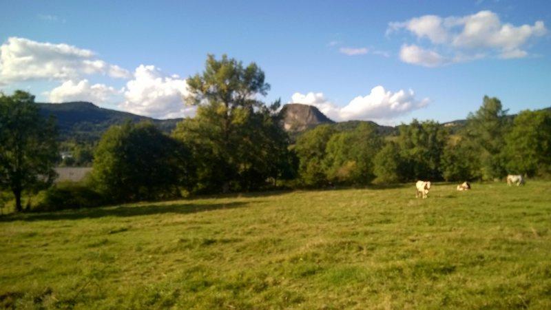 Vente terrain St julien chapteuil 55000€ - Photo 1